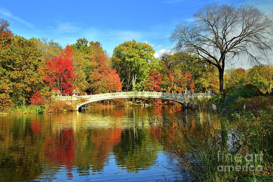 Bow Bridge and Autumn Beauty by Regina Geoghan
