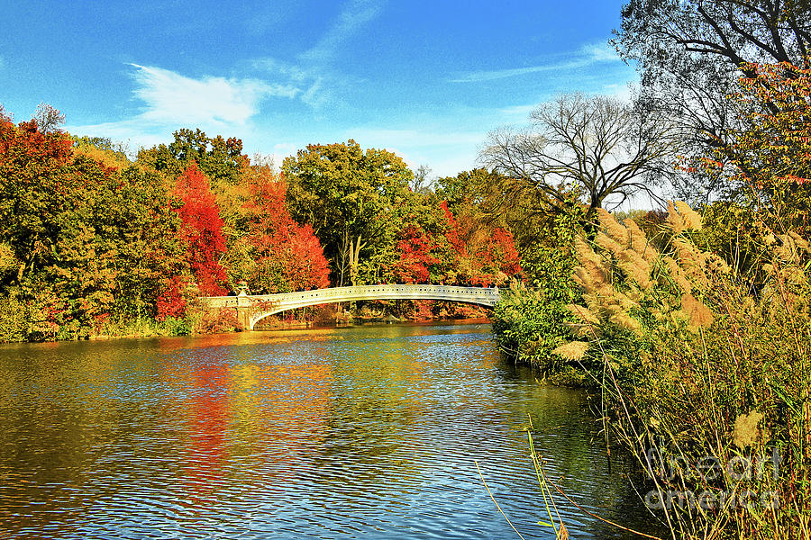 Bow Bridge and Autumn Perfection by Regina Geoghan