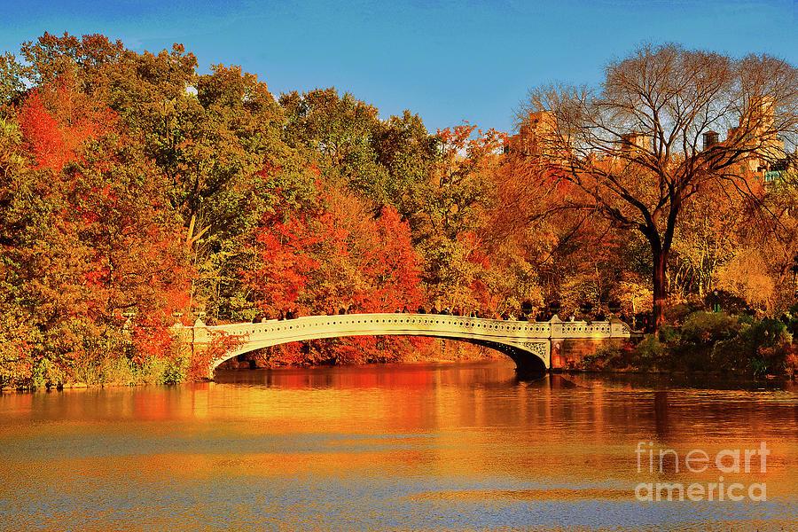 Bow Bridge Autumn Orangeglow by Regina Geoghan