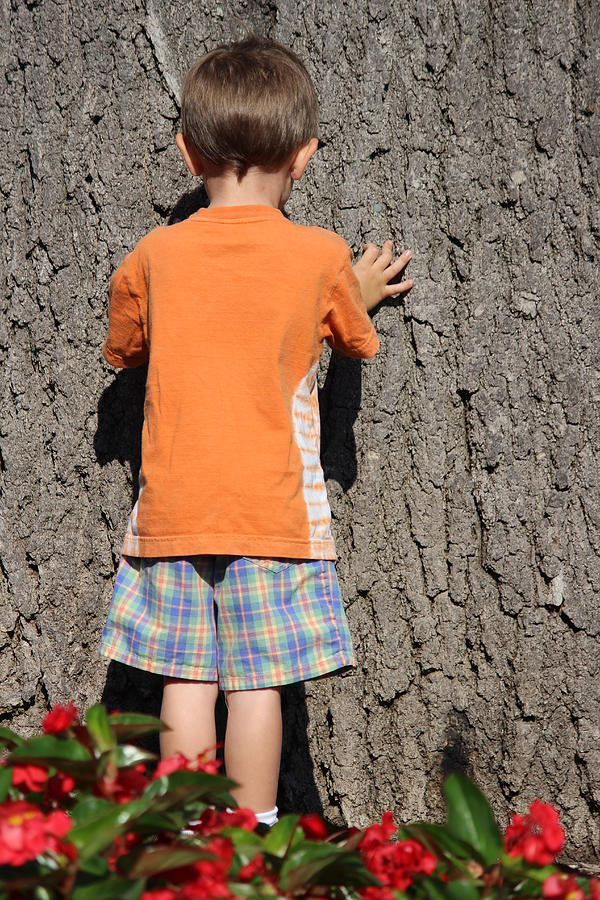 Boy Photograph - Boy At A Tree by Callen Harty