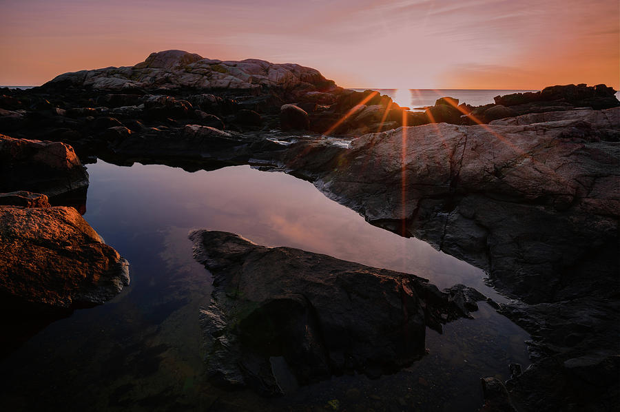 Brace Cove Reflections by Michael Hubley