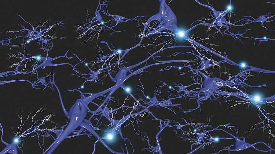Brain Cells With Electrical Firing Drawing by Bruce Rolff/Stocktrek Images