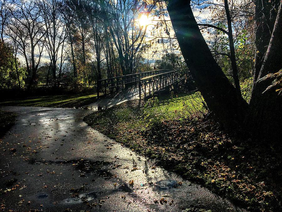 Bridge on the Trail IMG_4051 by Michael Thomas