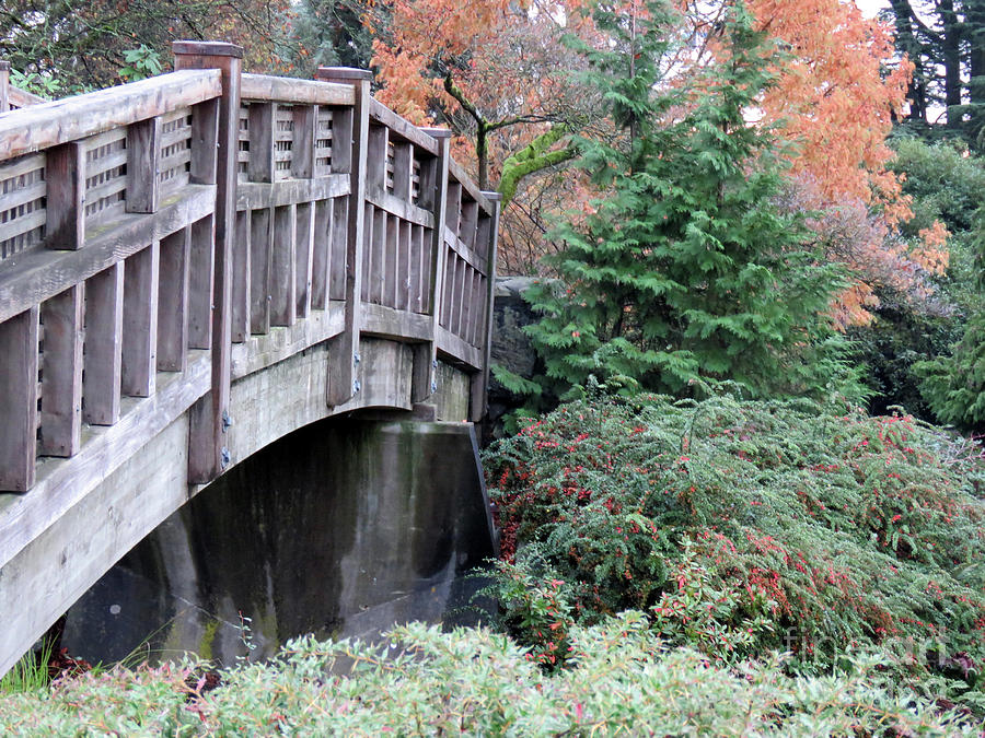 Wood Photograph - Bridge Over Paradise by Mary Mikawoz