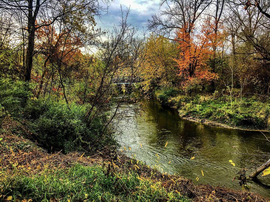 Bridge Over the Clinton River IMG_5684 by Michael Thomas