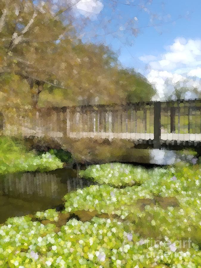 Bridge Over The Pond by Rachel Hannah