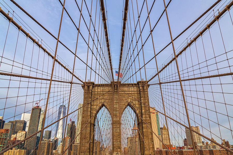 Bridge Webs by Angelo Marcialis