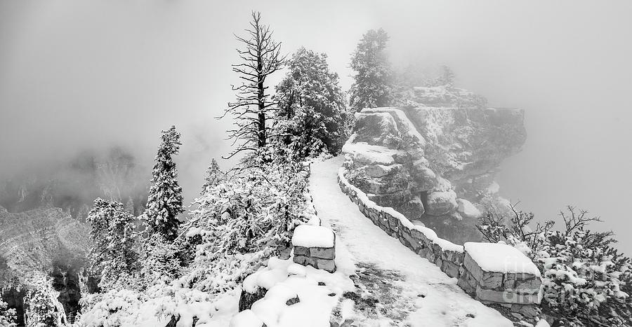 Bright Angel Trail North Rim Grand Canyon Black and White by Dustin K Ryan
