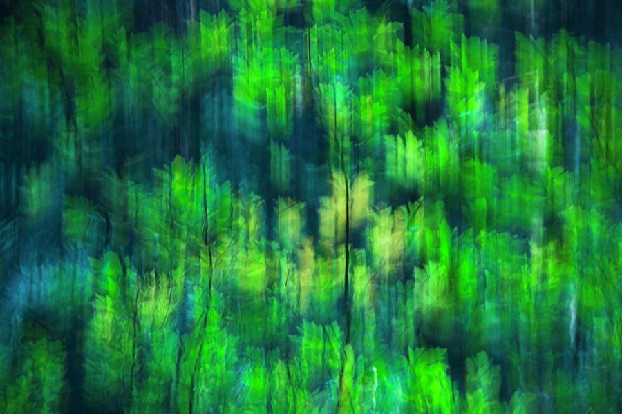 Bright Green Leaves by Yulia Kazansky
