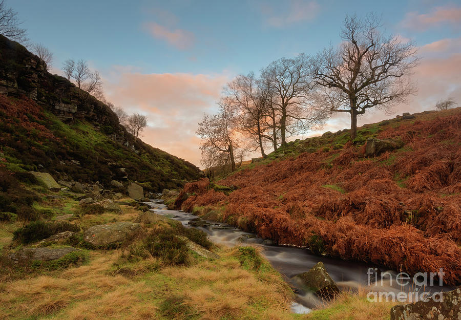 Bronte Country Photograph