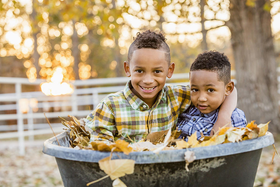 Brothers hugging in autumn leaves in wheelbarrow Photograph by Mike Kemp