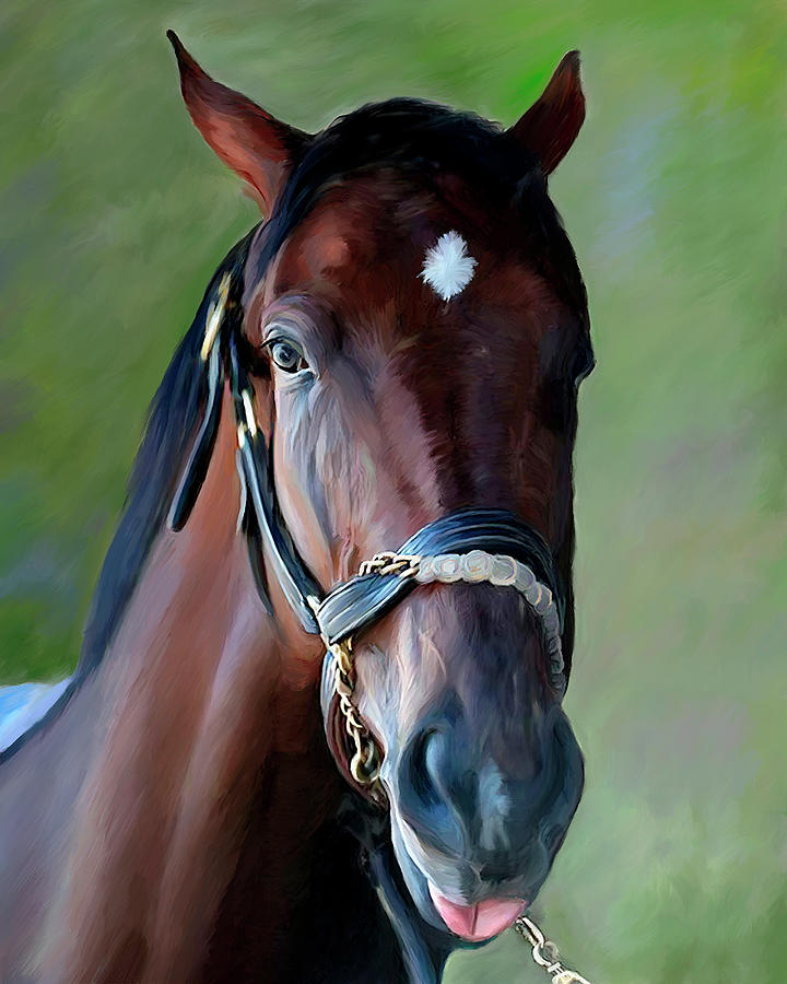 Brown Horse Portrait by Portraits By NC