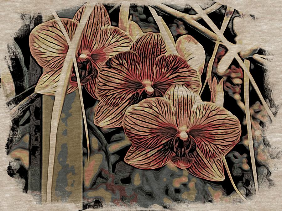 Brown Orchid Abstract Photograph