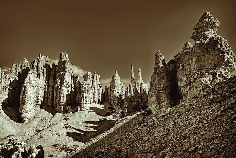 Bryce Canyon Landscape Photograph