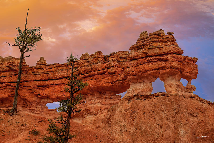 Bryce Color Photograph
