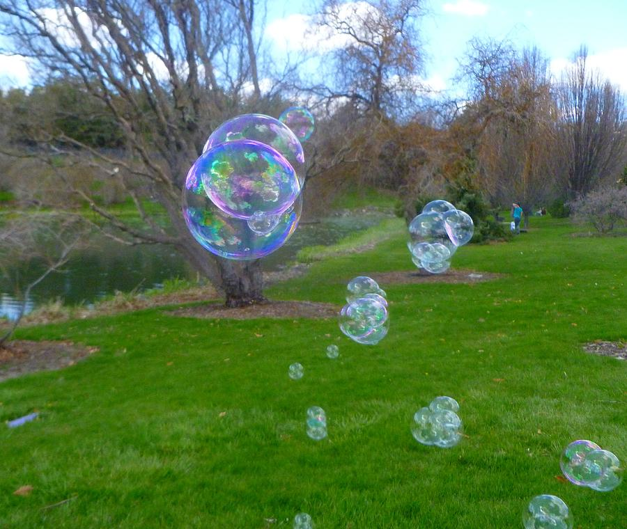 Bubbles in the park by Jean Evans