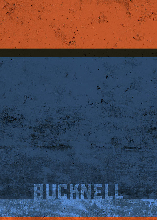 Bucknell Mixed Media - Bucknell Team Colors College University Distressed Vintage Series by Design Turnpike