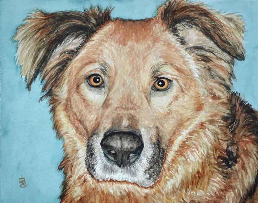 Buddy by Lynda Hoffman-Snodgrass