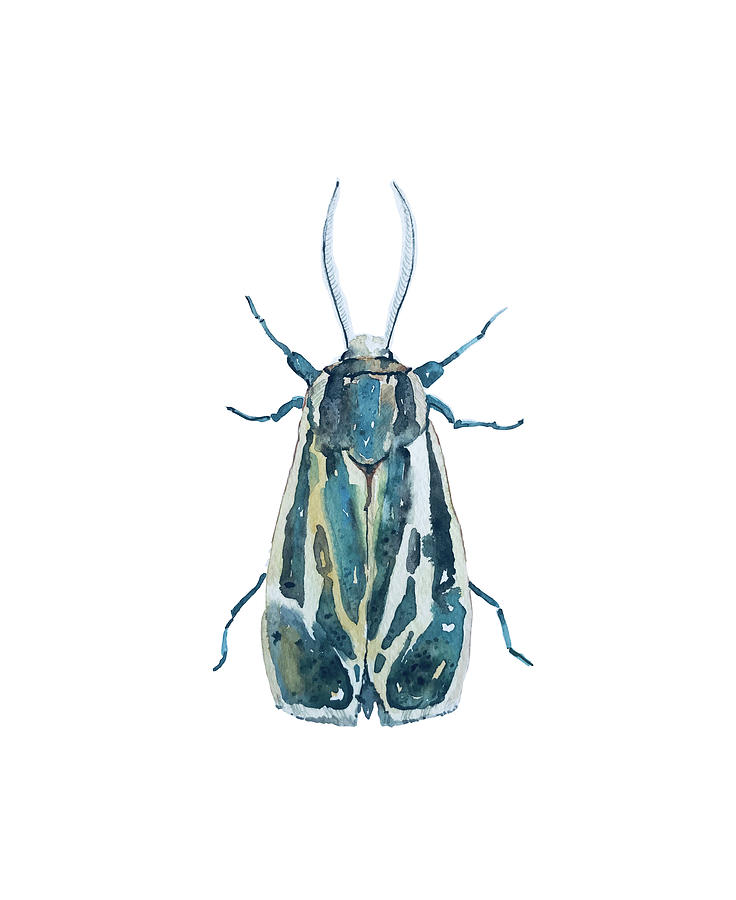 Bug Mask Painting