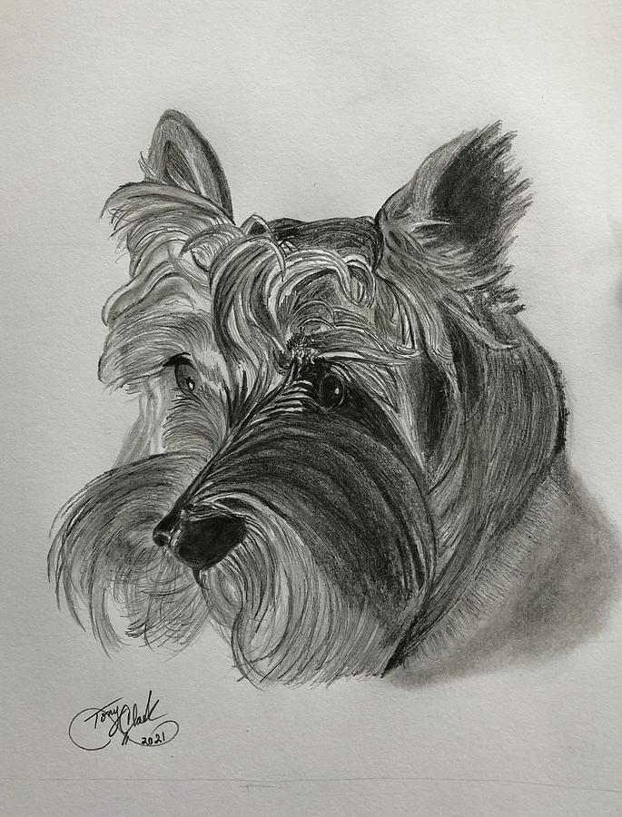 Bug Drawing - Bug the Dog by Tony Clark
