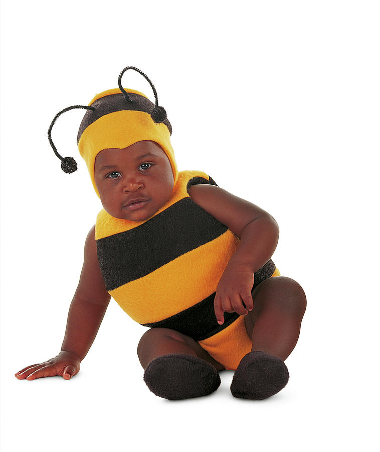 Bee Photograph - Bumblebee #2 by Anne Geddes