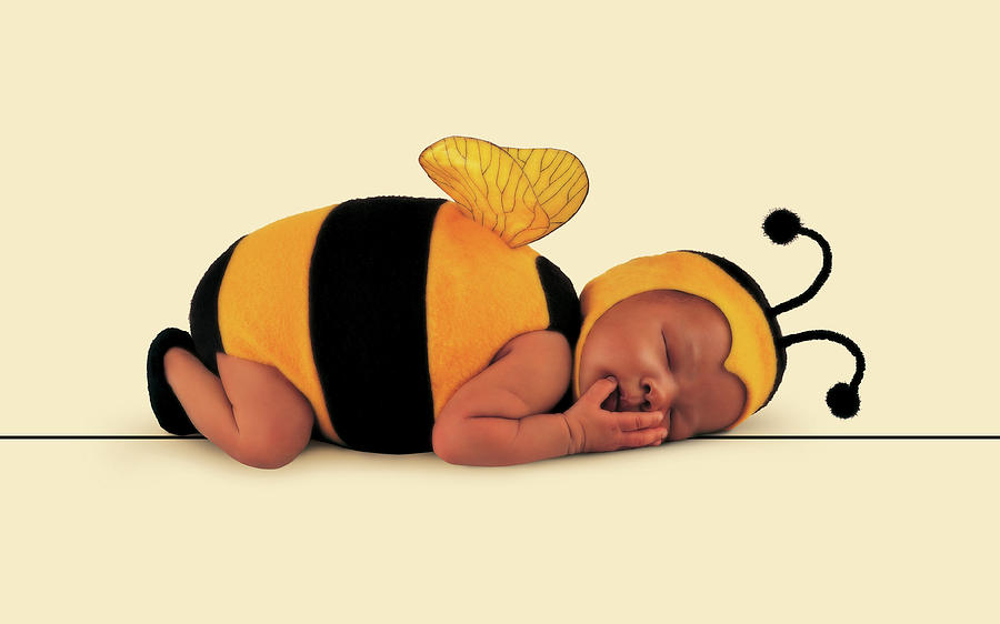 Bee Photograph - Bumblebee #6 by Anne Geddes