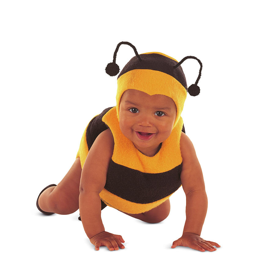 Bee Photograph - Bumblebee #8 by Anne Geddes