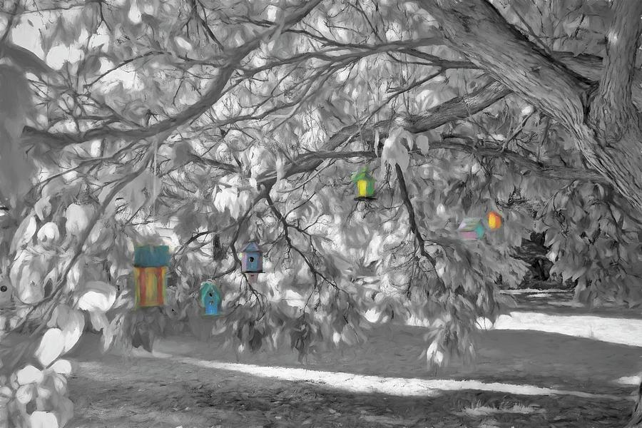 Burlington Birdhouse Glow by Wayne King