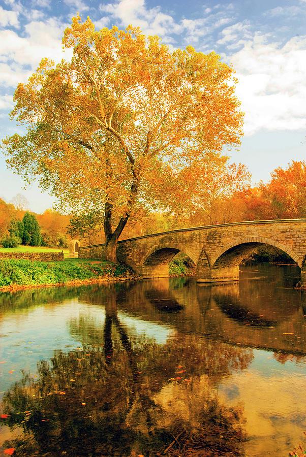 Burnside Bridge In Autumn Photograph
