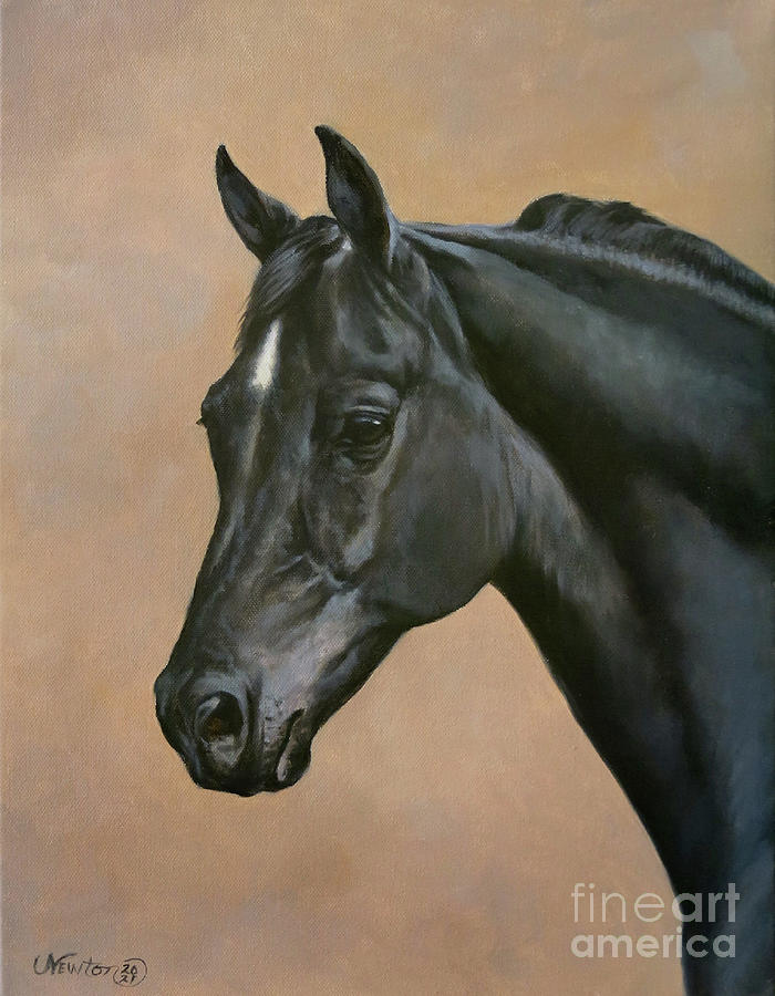 Burnt Mountian Ebony Hawk Painting