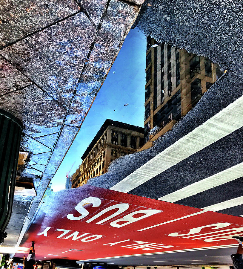 Puddle Photograph - Bus Only by Julia Maddox
