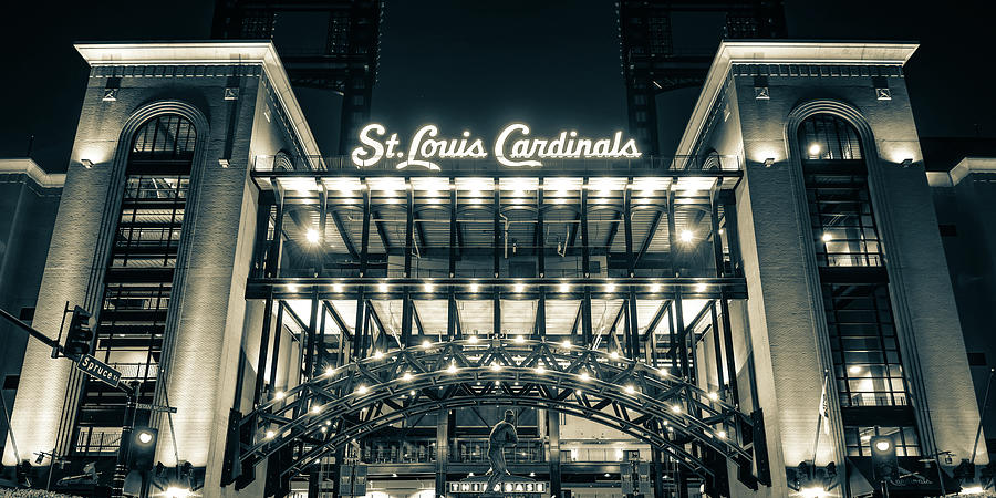 Busch Stadium And St Louis Cardinals Baseball Panorama In Sepia Photograph