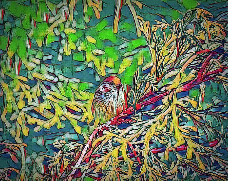 Bushtit On Evergreen Branch Digital Painting Digital Art