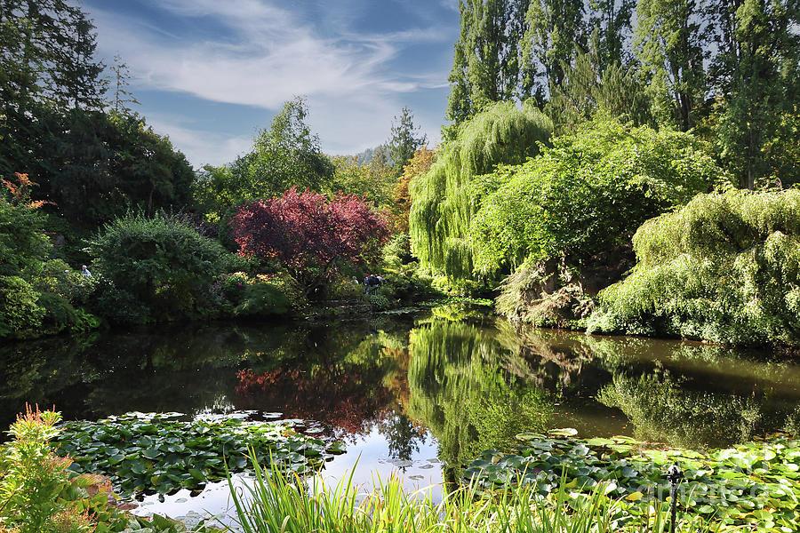 Butchart Gardens Photograph - Butchart Gardens Pond by Kirt Tisdale