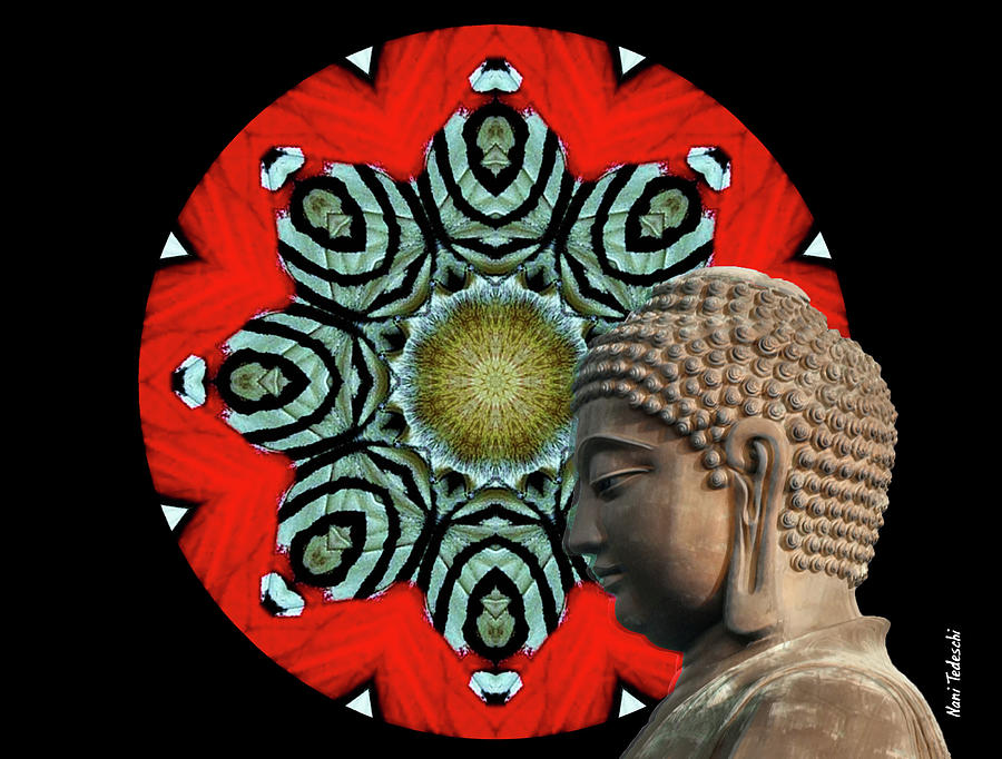 Butterfly Digital Art - Butterfly Budha  by Nani Tedeschi