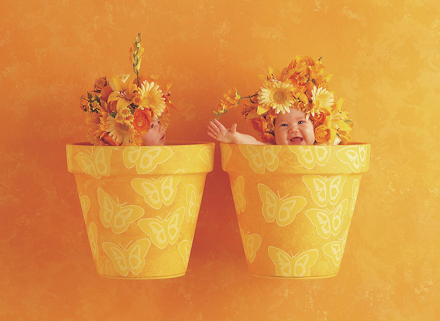 Color Photograph - Butterfly Flowerpots by Anne Geddes