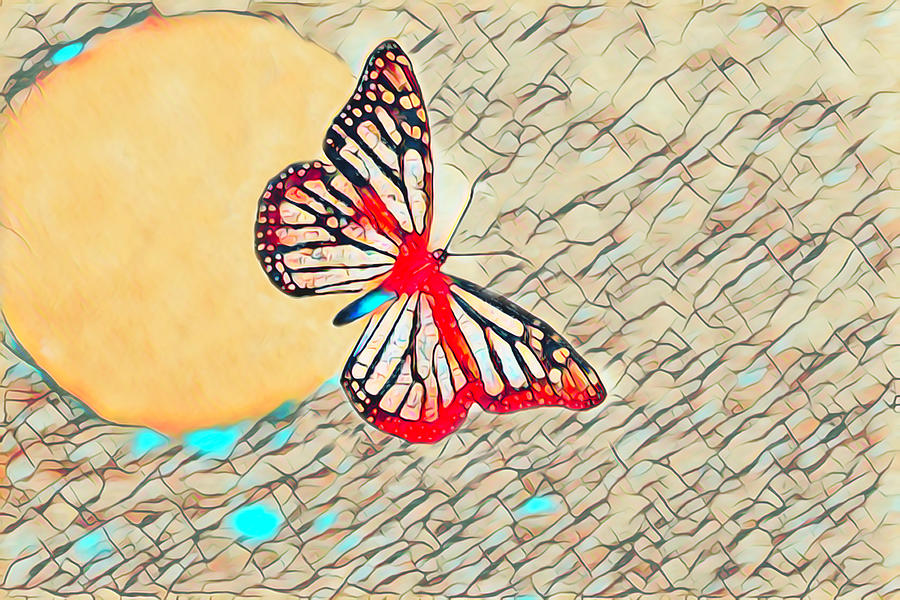 Butterfly Moon 3 Digital Art