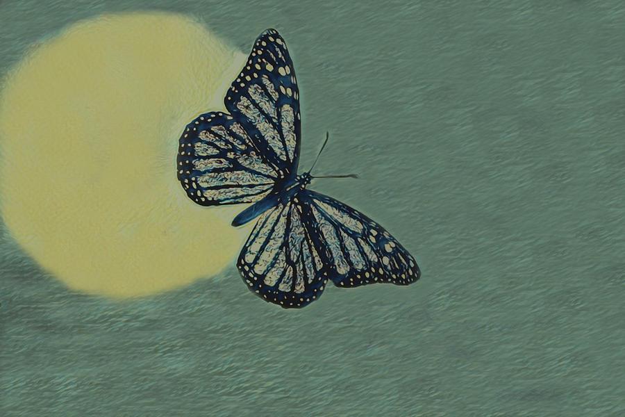 Butterfly Moon Digital Art
