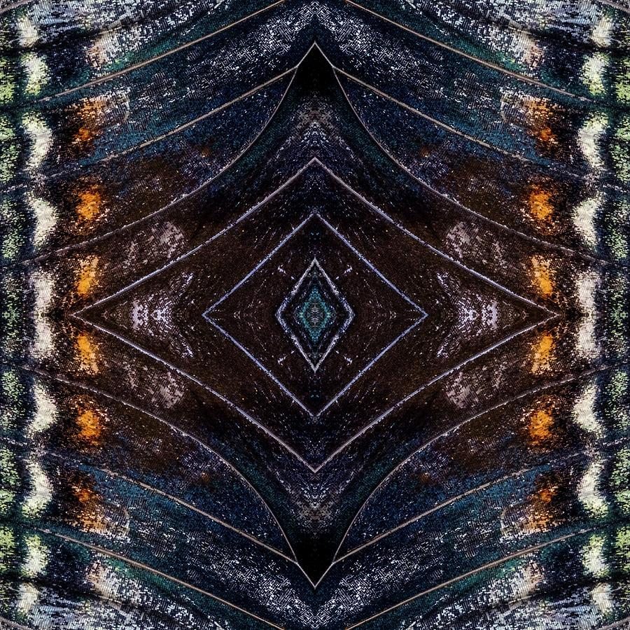 Butterfly Wings Three by Glenn DiPaola