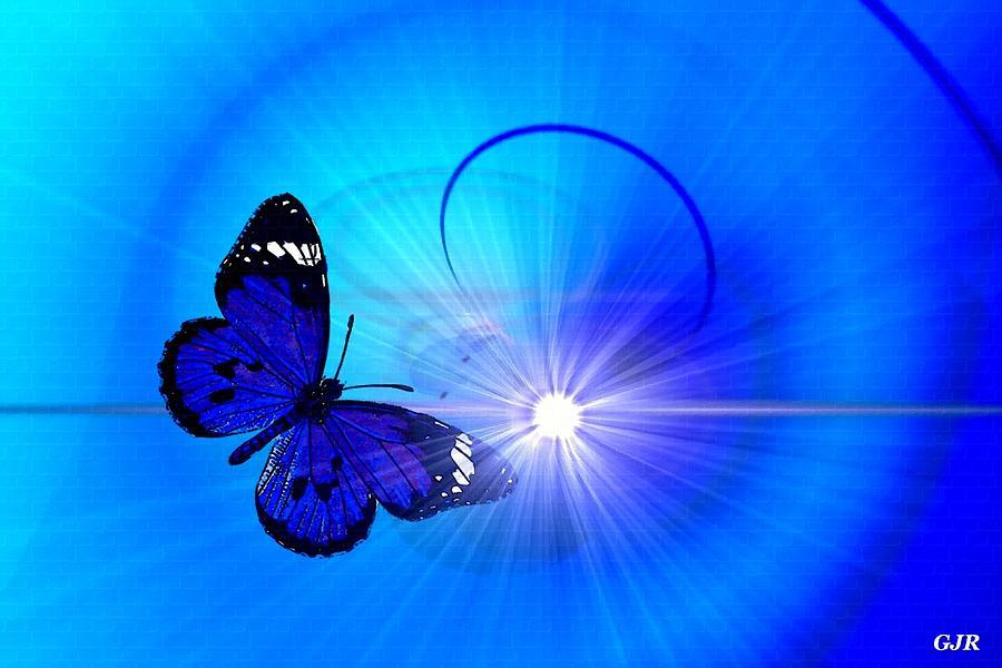Butterflycalia Catus 1 No. 1 - Butterfly Flying Into Sunrays L A S Digital Art