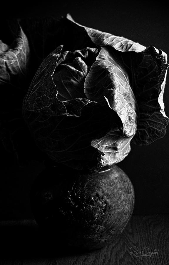 Cabbage Head In BW by Rene Crystal