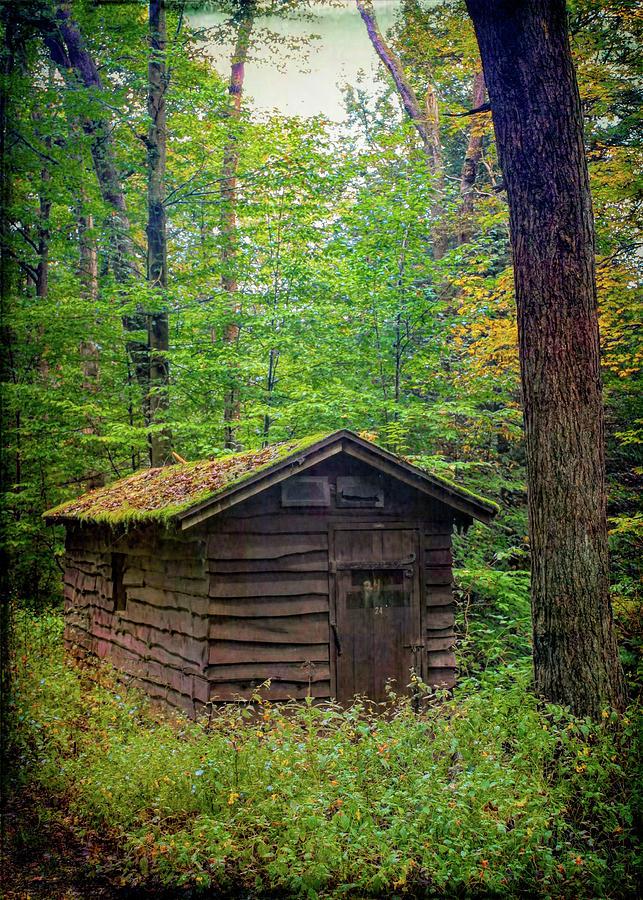 Cabin 24 Photograph