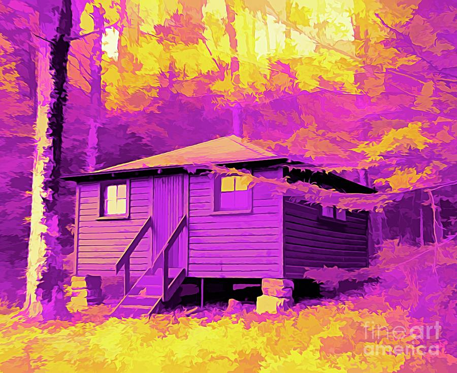 Cabin At Allegany State Park Ny Abstract Amertrine Effect Photograph