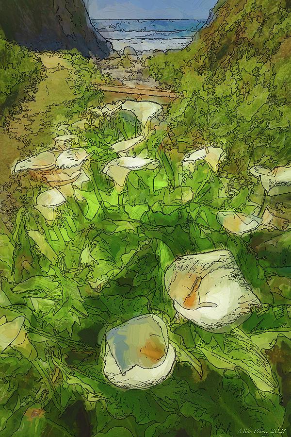 Cala Lily Valley 932 Digital Art
