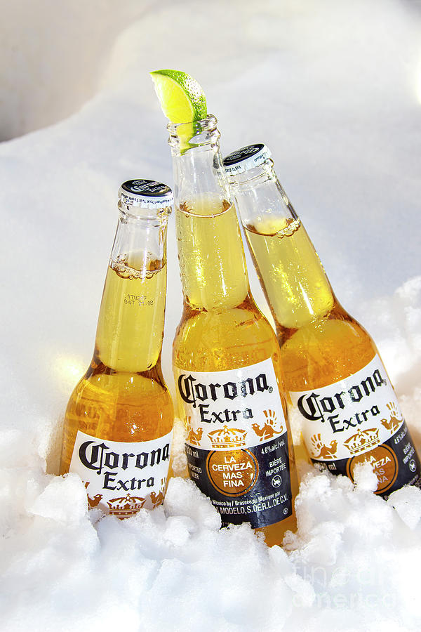 Calgary Ab Canada October 1 2019 Three Corona Beer Bottles With Lime On Ice Snow Full View Photograph By Marvin Samuel Tolentino Pineda