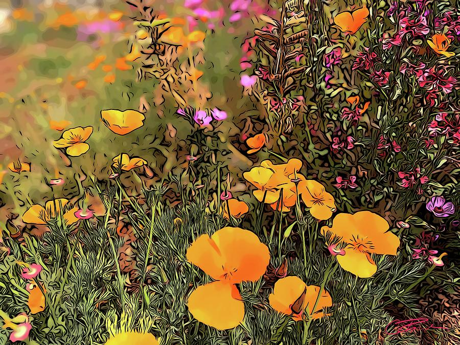 Field Of Poppies Photograph - California Golden Poppies by Christina Ford