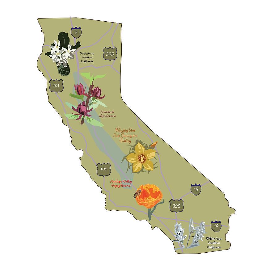 California Native Plants Digital Art by Jesse Chaidez