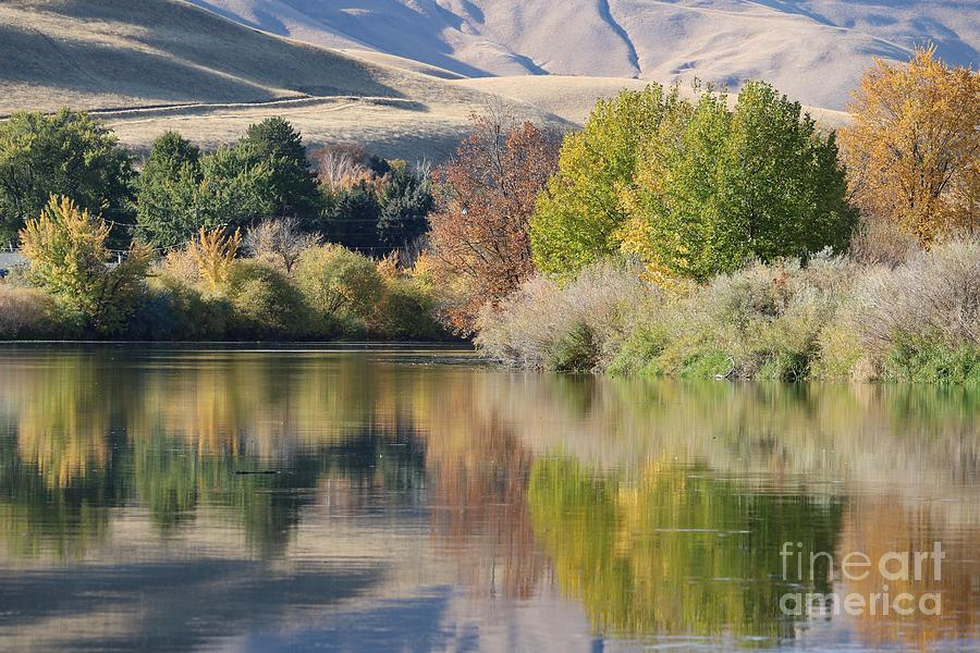 Calm Yakima River with Horse Heaven Hills by Carol Groenen