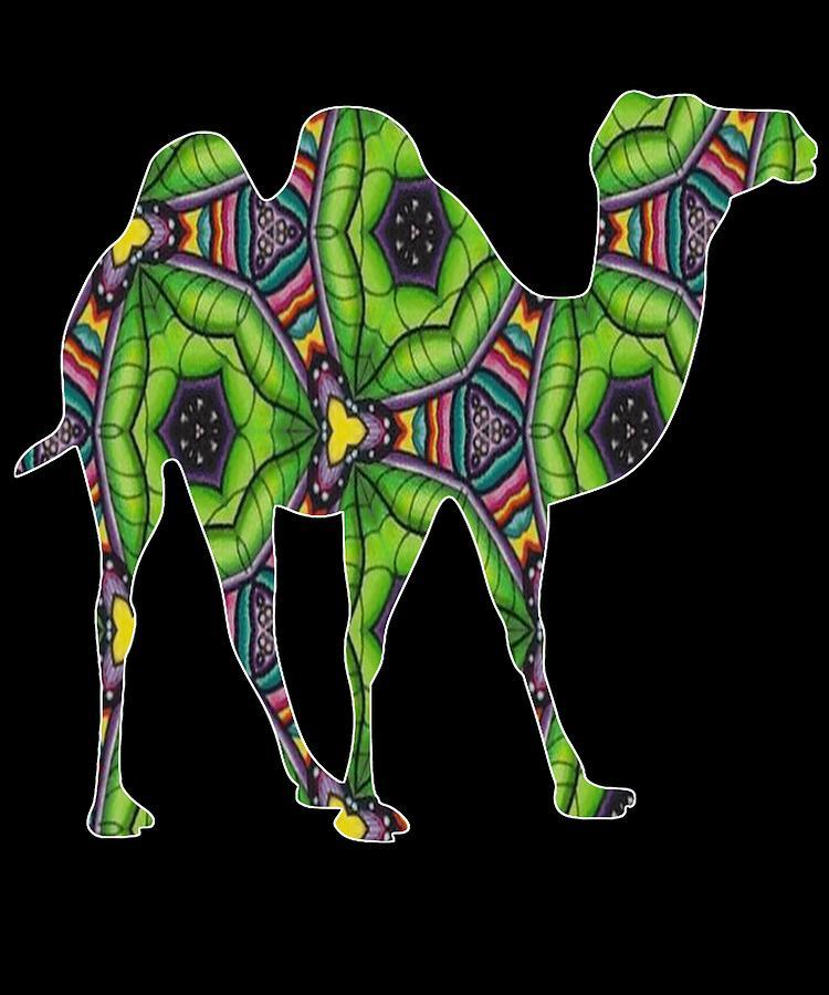 Camel 341 by Kaylin Watchorn