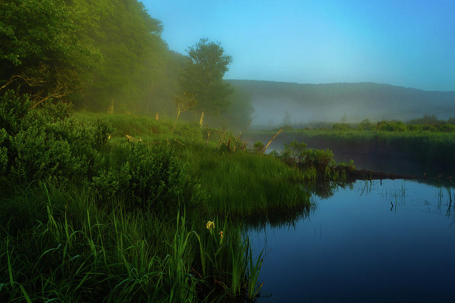 Canaan Valley Mornings Photograph